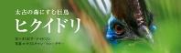 太古の森にすむ巨鳥 ヒクイドリ