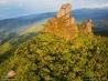 世界最古の熱帯雨林(オーストラリア)