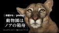 [保護する/PROTECT]動物園はノアの箱舟