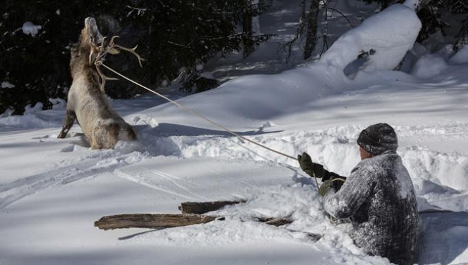 スキーの起源を訪ねて