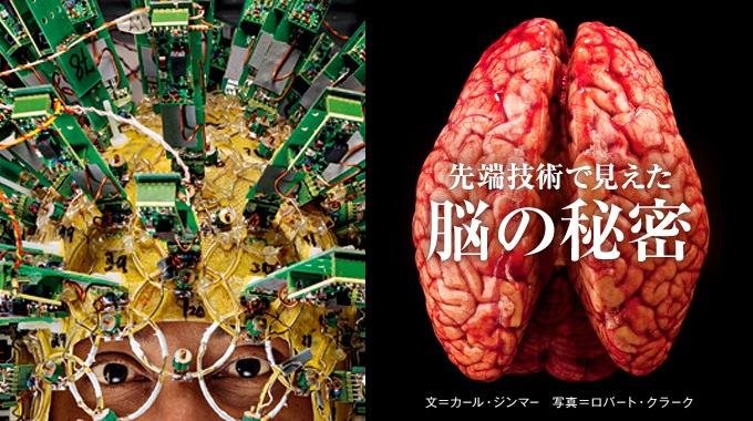 途方もなく複雑な人間の脳は、どのように機能しているのか。脳の奥深くをのぞき見る先端技術を駆使した、脳研究の最前線に迫る。