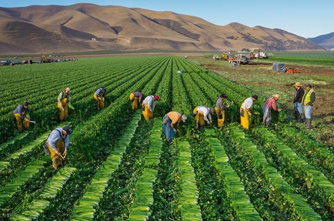 シリーズ 90億人の食 世界の食の未来
