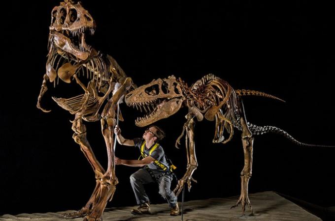 米国ユタ州 知られざる恐竜の楽園