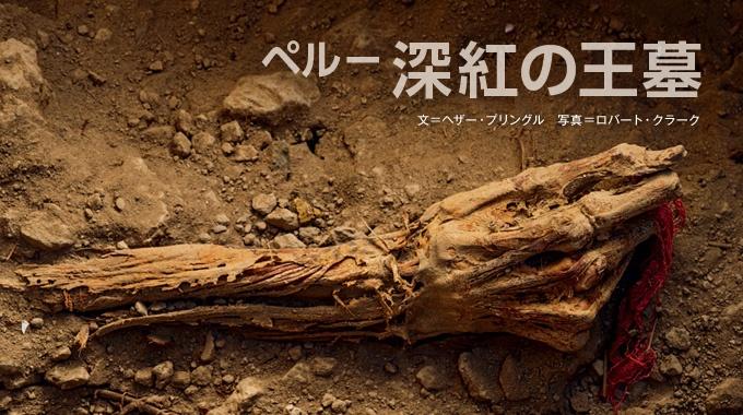 墓泥棒に荒らされてきたペルーのエル・カスティージョ遺跡で、奇跡的に発見された未盗掘の墓。古代ワリ帝国の謎の解明につながると、期待がかかる。