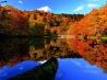 秋の彩り(青森県 十和田市 菅沼)