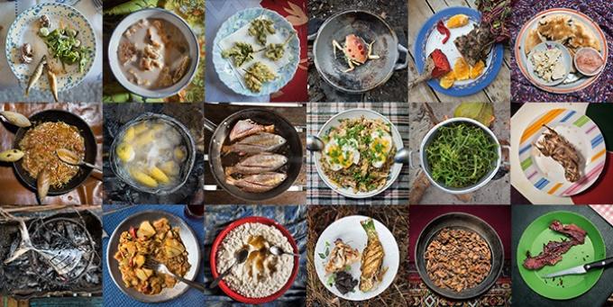 シリーズ 90億人の食 食べ物と人類の進化