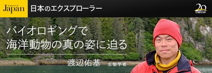 もうすぐアメリカやイギリスのサメの研究者が9名も来日する。日本が誇るサメスポット、伊豆は神子元島に出没するシュモクザメの大集団を私とともに研究するためだ。