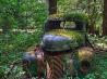 森の中の古いトラック