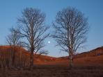 月の出、コロラド州