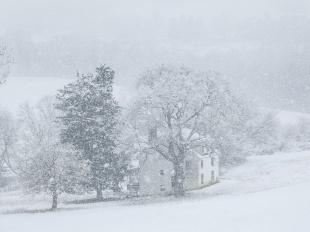 冬の農家、デラウェア州
