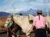 馬牧場、アルゼンチン