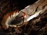 洞窟探検のロマン