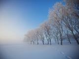 凍てつく夕暮れ、カナダ