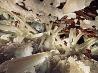 結晶の洞窟、メキシコ