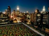 屋上緑化、ニューヨーク
