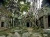 タ・プローム寺院、カンボジア