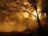 野焼き、ブラジル・ボリビア国境