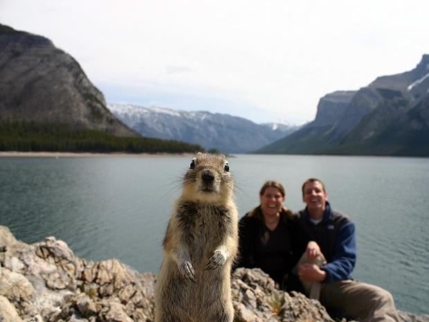 ジリスと記念写真、カナダ