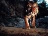 忍び寄るトラ、インド